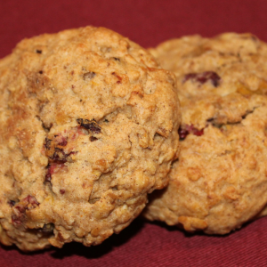 seasonal pumpkin oatmeal cookies MA and RI